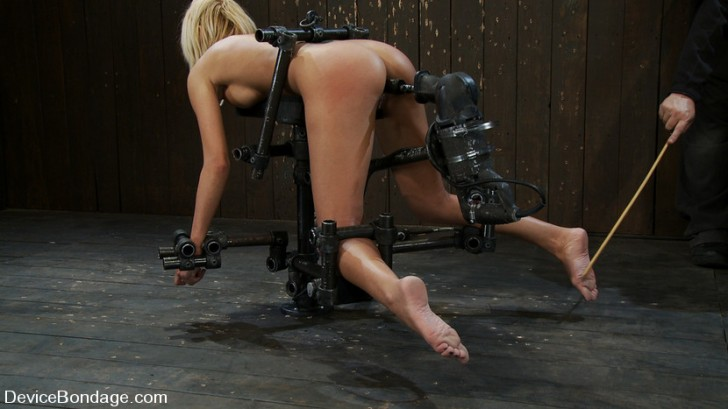 dog fucked tied Search - XVIDEOSCOM
